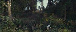 TREES_still_02